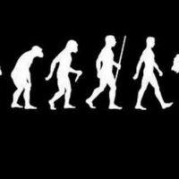 La Teoria de la Evolucion de la Musica Pop