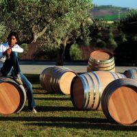 Zonin: Pasión por la tierra, las uvas y el vino