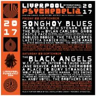 Liverpool Psych Festival 201700010
