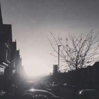 Rodney Cromwell: Dreamland