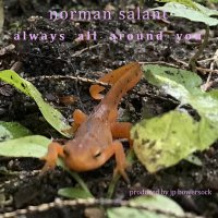 Norman Salant: Always All Around You
