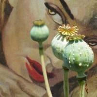 The Speed Of Sound: Opium Eyes